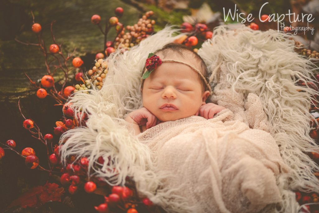 Stella Dolenc's Newborn Sessions