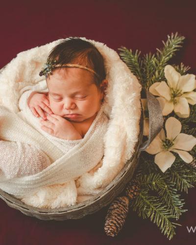 Alana (11 days new)
